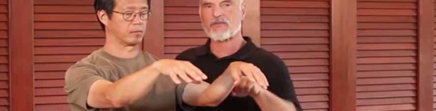 Energy Arts Training Circle Videos – Tai Chi and Healing
