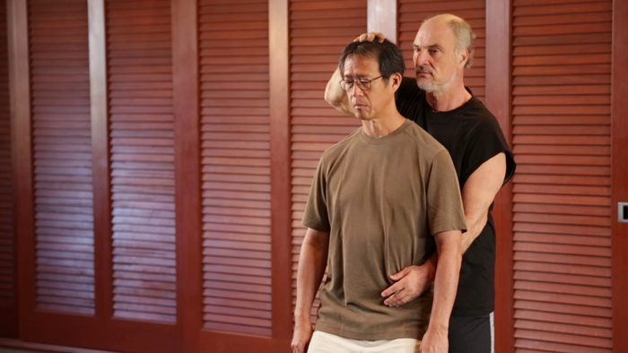bruce frantzis and student body alignments energy gates qigong online program