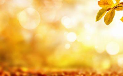 Kumar Frantzis: An Informal Discussion on Taoist Meditation – Part 2