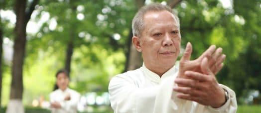 Tai Chi for Martial Arts