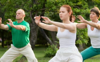 Energy Cross-Training Part 2/3: Connecting Longevity Breathing Yoga with Tai Chi, Bagua and Qigong