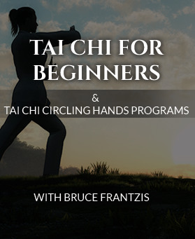 energy arts products related qigong tai chi beginners