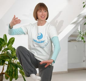 senior energy arts instructors tai chi qigong meditation