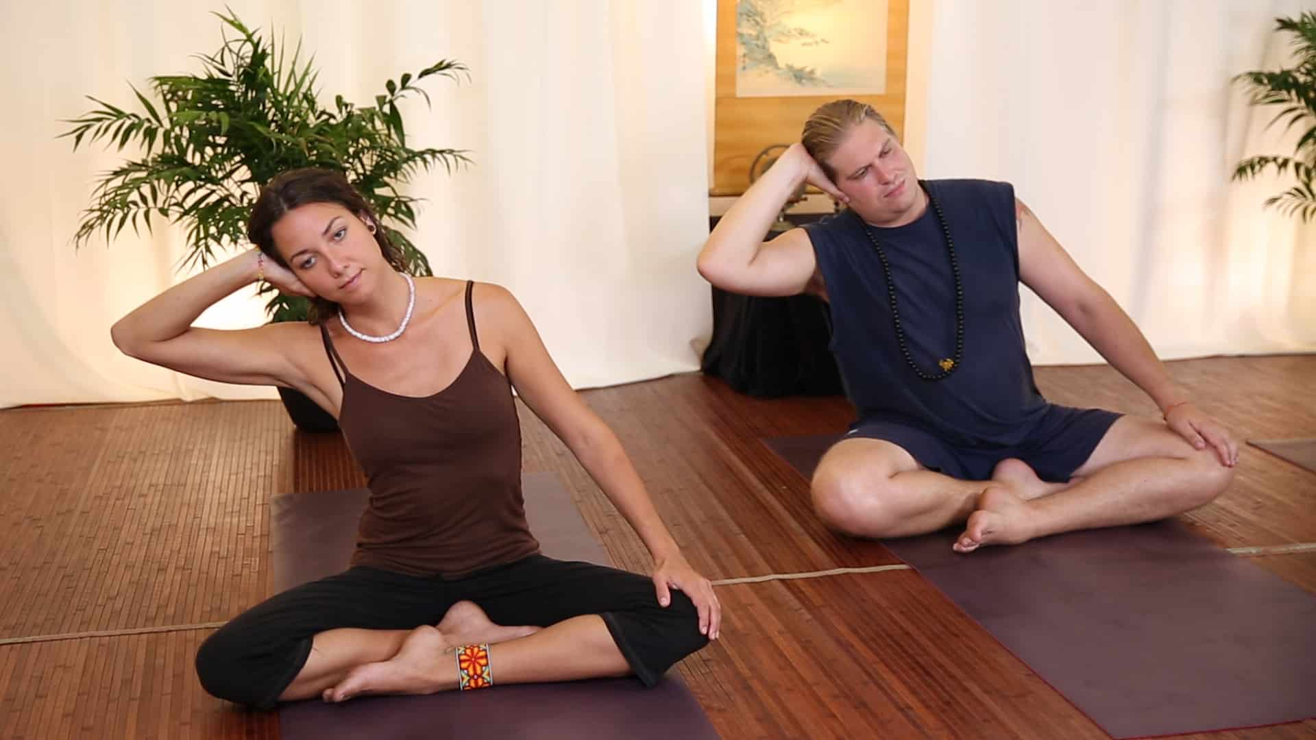 learn taoist yoga models demonstrate module 2 breathing liver wood spleen earth