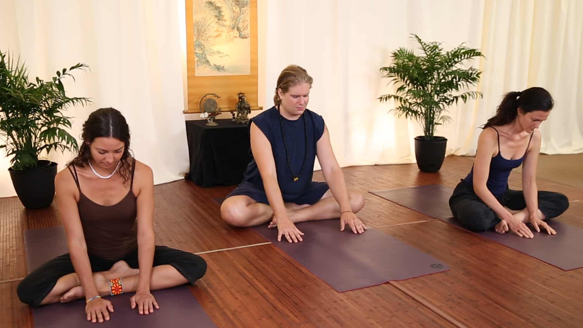 learn taoist yoga models demonstrate proper movements