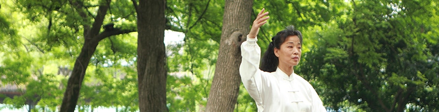 Tai Chi Tips Part 3